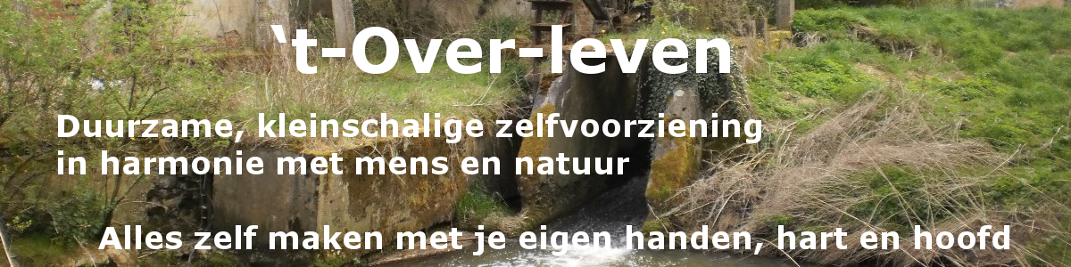Toverleven