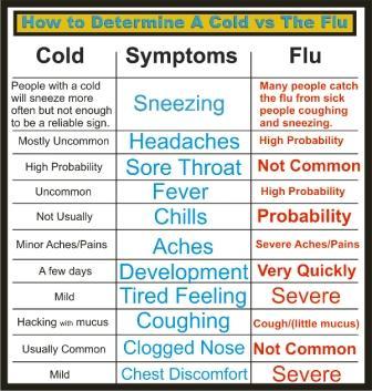 Verkoudheid En Griep Uitzieken