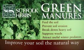 greenmanure